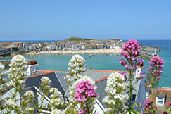 Discover St Ives