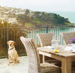 View our dog friendly cottages